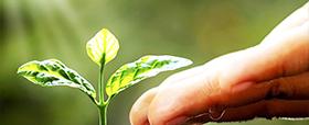 L'agricoltura Biodinamica e le nostre macchine!