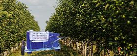 Le macchine e gli attrezzi agricoli per la raccolta della frutta